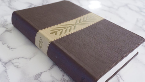 The Message Bible Cover — Harvest Wheat