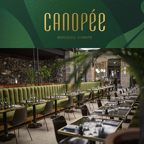 CANOPÉE-WEB-PHONOMADE.jpg