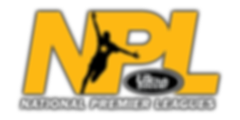 NPL_logo_2.png