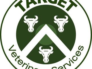 Target goes live!