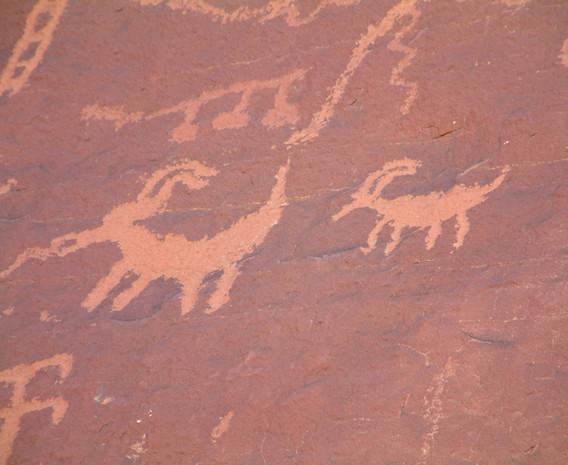 Petroglyph - 500+ years old