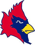 cardinal-head-tranp5.jpg