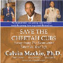 Save the Cheetah Cubs