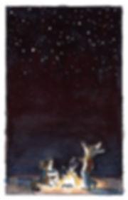 WC -- Campfire Night Sky -- Stargazing -