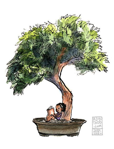 Bonsai -- Little Reader.jpg