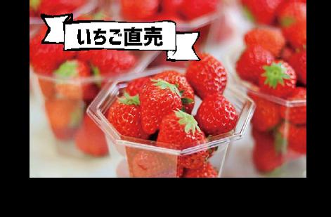 いちご直売.png