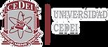 Universidad CEDEI