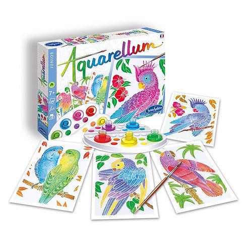 Aquarellum - Perroquets