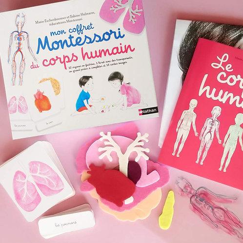 Coffret Montessori Le corps humain