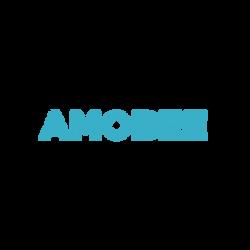 MM-partner-amobee