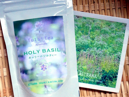 【トゥルシー茶】今年も入荷しました♪