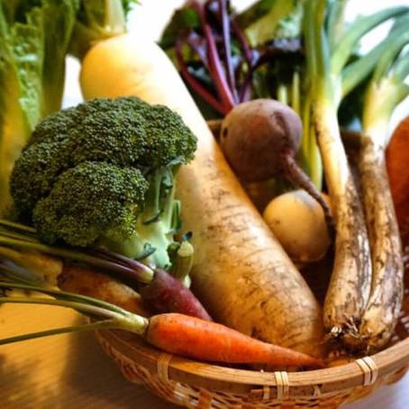大地の恵みたっぷりの、お野菜・お米の美味しさの秘密