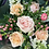 Thumbnail: Florist Seasonal Bouquet