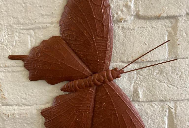 Rusty Garden Butterfly - Small