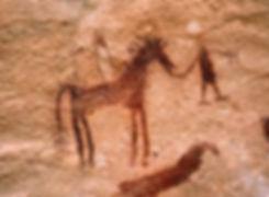 horses12.jpg