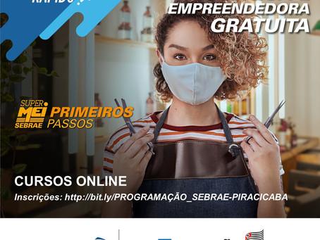 Sebrae em parceria com o Senai e o Senac oferece uma série  de cursos on-line gratuitos
