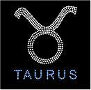 taurus large.jpg