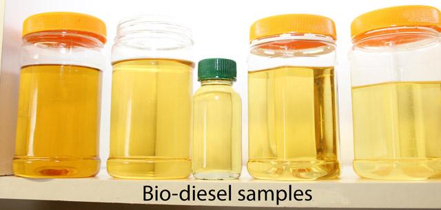 Bio-diesel samples