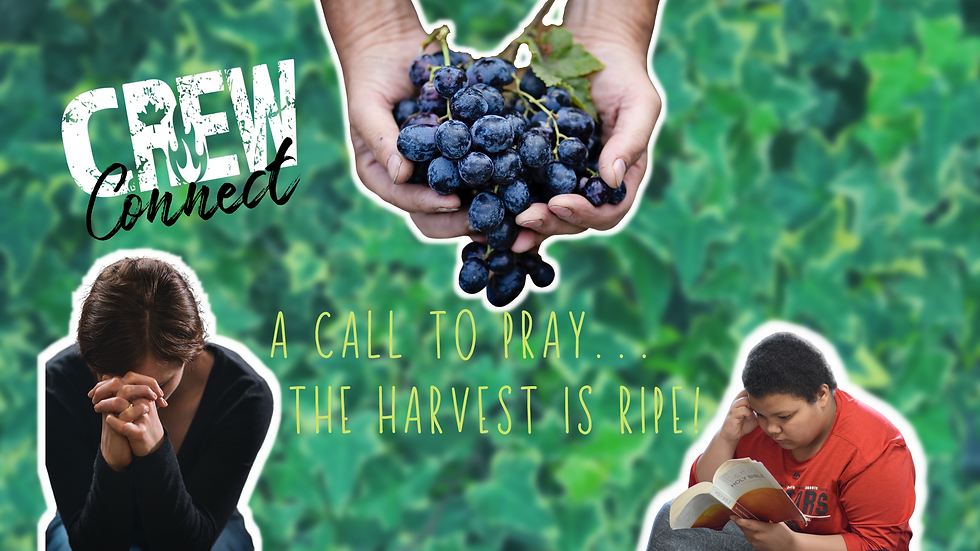 A Call to Pray…the Harvest is Ripe!