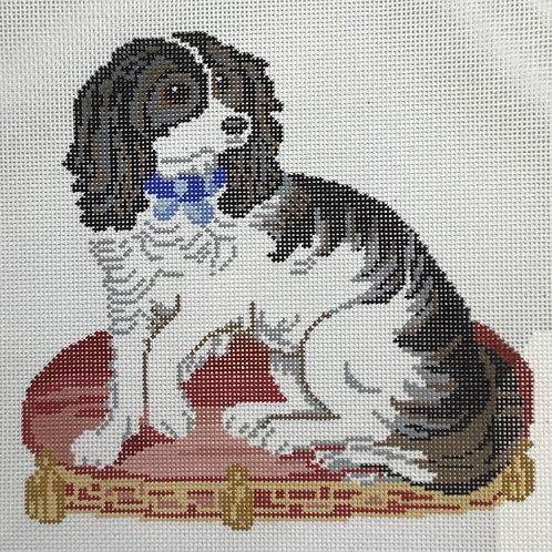 Fancy Pup