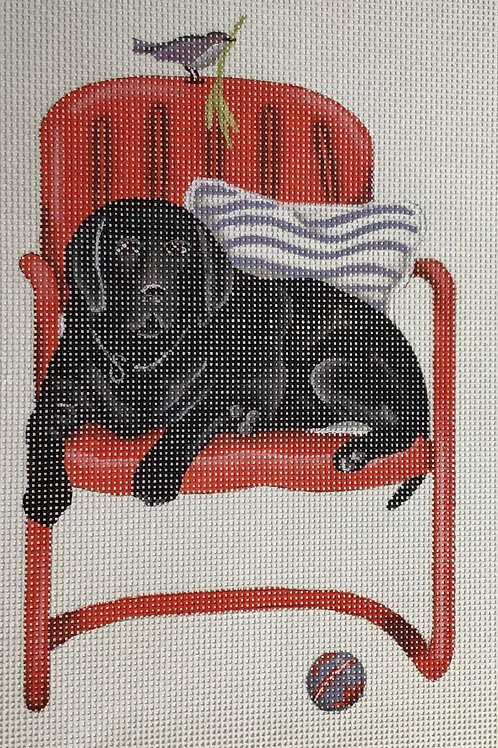 Black Lab in Red Chair