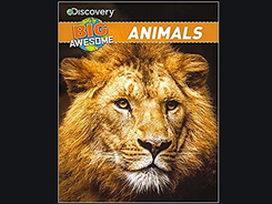 Big Awesome Animals, from Discovery Books