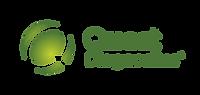 QD_stacked_logo_r_rgb_gradient_transpare