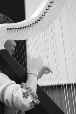 San Diego Harp Lessons