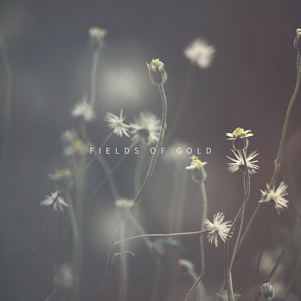 Fields Of Gold_BenLaver_3000p.png