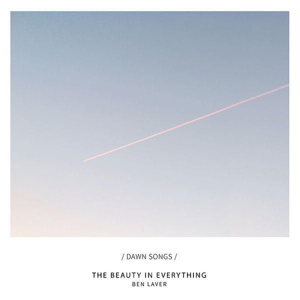 Ben Laver The Beauty In Everything 3300p