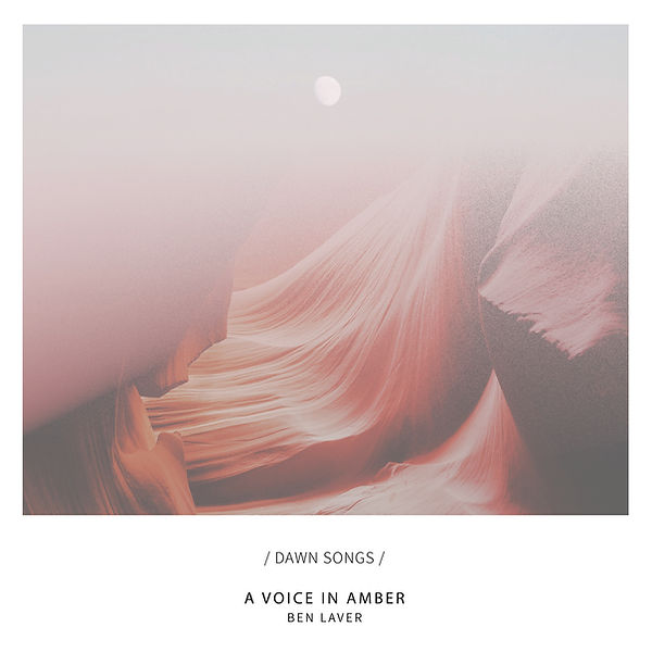 Ben Laver A Voice In Amber 3300p.jpg