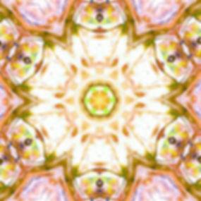 chakra-685024_640.jpg