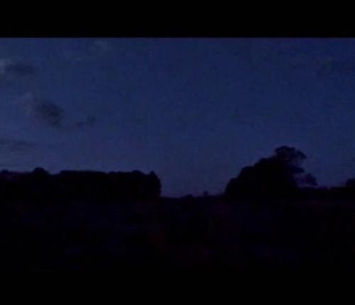 Gesang der Nachtigall.mp4