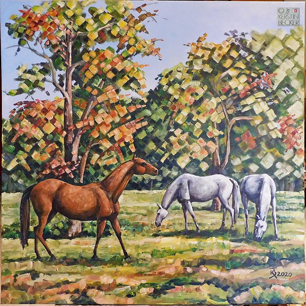 Pferde auf der Weide 80x80 17Nov Abschlu