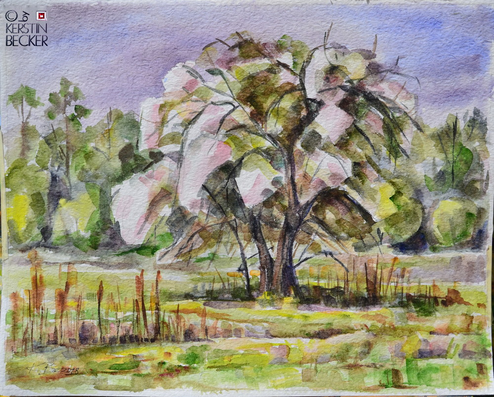Aquarell Apfelbaum in Blüte,40x50cm