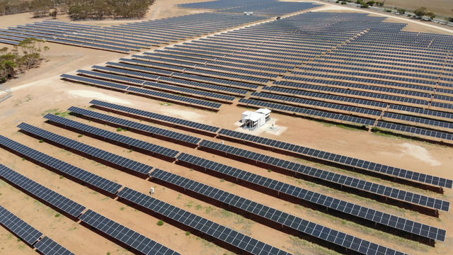 Mannum Solar Farm - 12 months on
