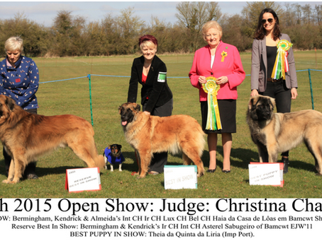 March 2015 Open Show
