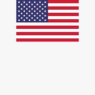 Usa Flag1.png