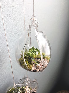 terrarium glass home and garden