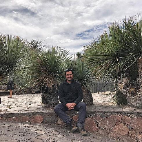Oscar Andreoli Jardines plantas jardinería mantenimiento de jardines