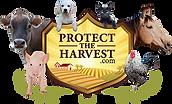 pth-logo-animals-no-bg.png