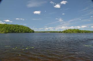 Au Sable River at Lumbermans Memorial DS