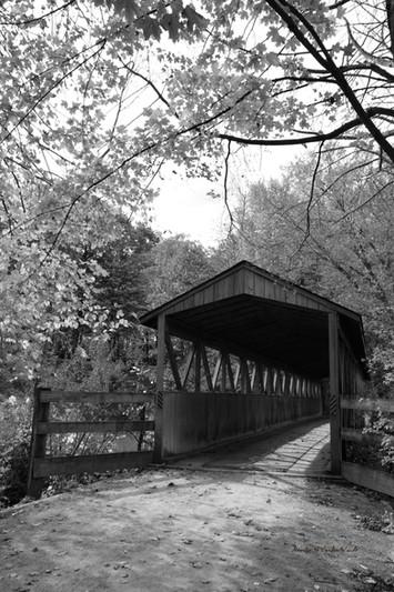 Donald F Nichols Bridge B&W DSC_6208_125