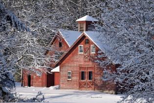 Fresh snow 1 DSC_7325_1621.JPG