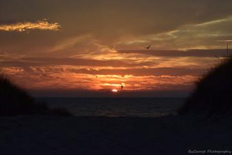 Salute to the Sunset DSC_0039_new.jpg