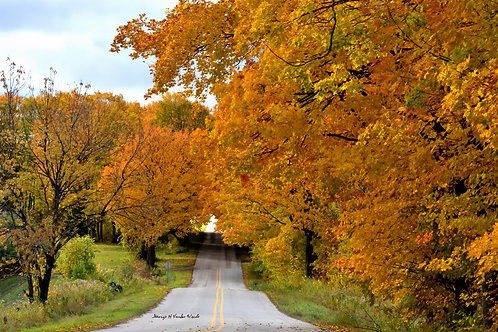 Disappearing  Road DSC_4511_352 Standout