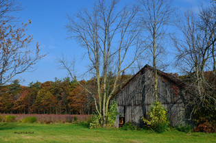 Old Barn at Ferris in Fall DSC_2382_602.