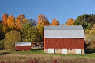 Hillside Farm DSC_4587_338.JPG