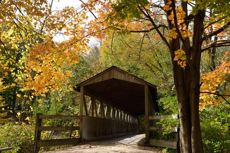 Donald F Nichols Bridge DSC_6205_1251.JP