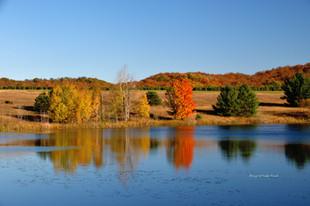 Fall Reflections DSC_4570_332.JPG